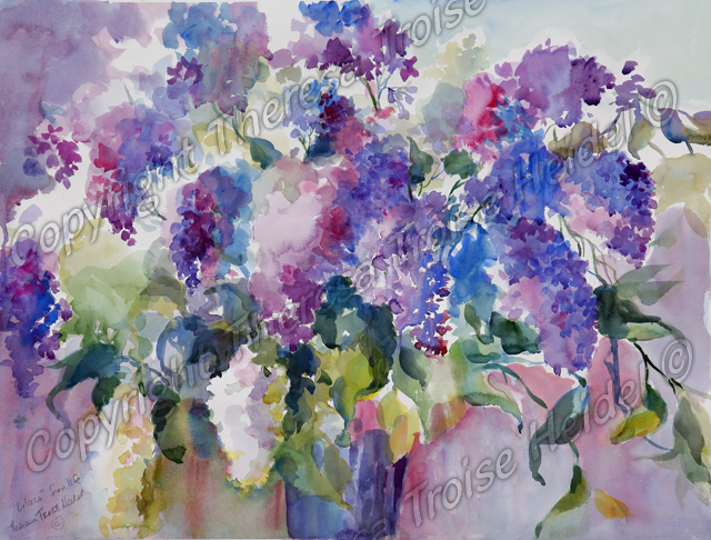 Lilacs, painted from Life