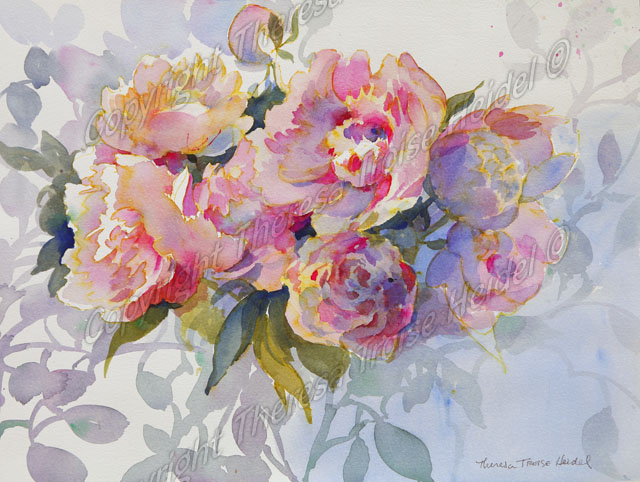 Peony Shadows, painted from life