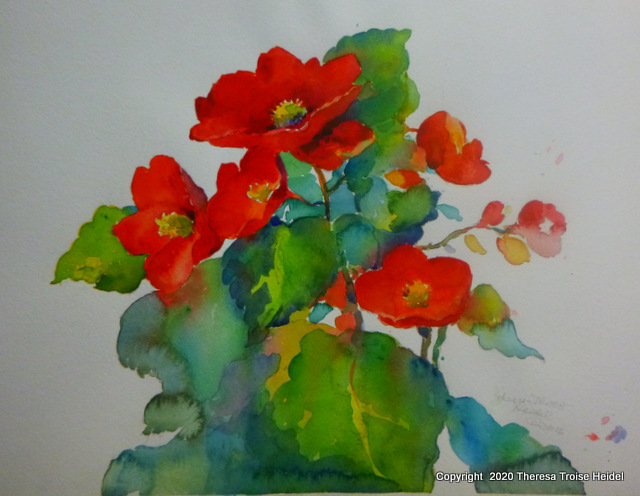 "Begonias, [ainted from life, unmatted, 12""H x 16""W"