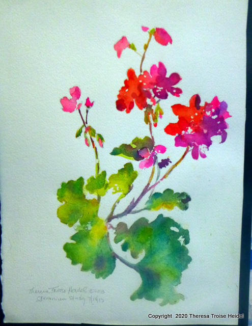 "Geraniums, painted from life, unmatted, 11""W x 15"" L"