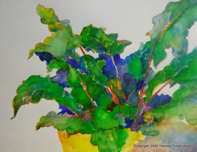 """Study of Gebera Daisy Leaves, unmatted, 9 and 1/4""""H x 12"""" W"""