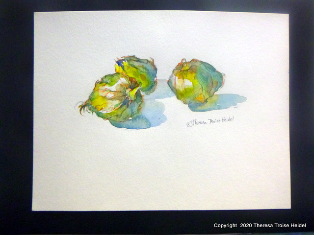 "Tomatillos, painted from life, unmatted, 10""H x 13""W"